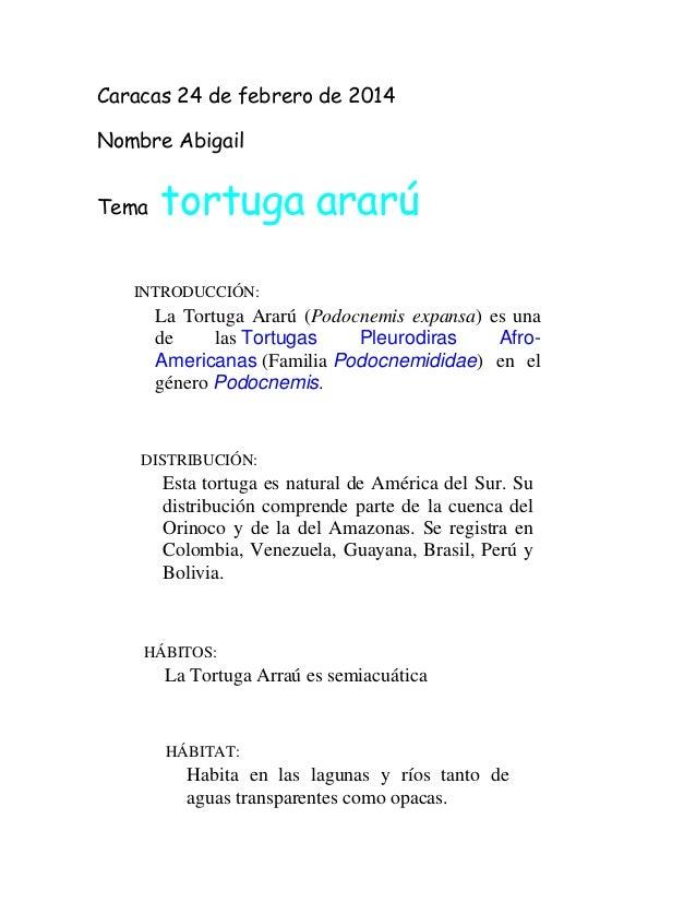 Caracas 24 de febrero de 2014 Nombre Abigail Tema tortuga ararú INTRODUCCIÓN: La Tortuga Ararú (Podocnemis expansa) es una...
