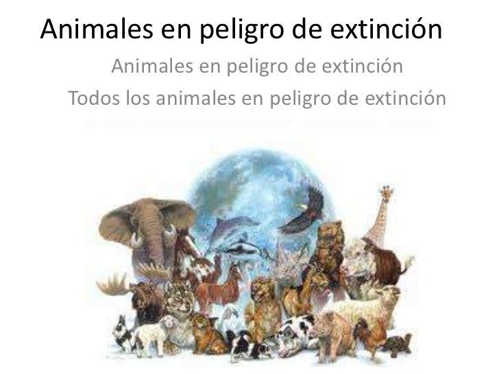 Animales en peligro de extinci n tortuga marina for Informacion sobre los arquitectos