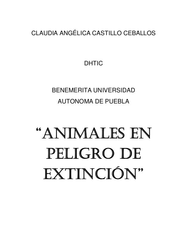 Animales en peligro de extinción11