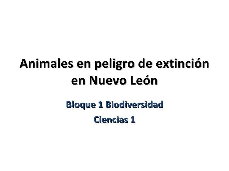 animales en peligro de extincion en leon:
