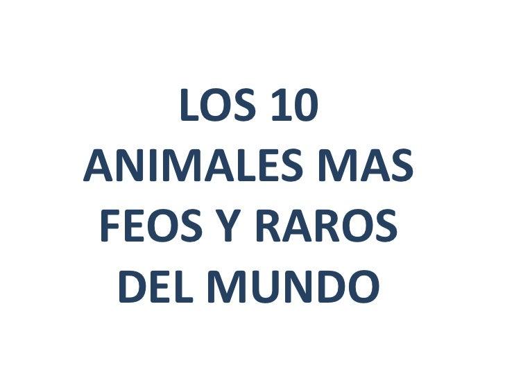 Animales feos