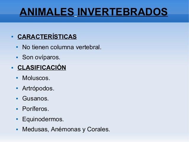 ANIMALES INVERTEBRADOS  CARACTERÍSTICAS  No tienen columna vertebral.  Son ovíparos.  CLASIFICACIÓN  Moluscos.  Artr...