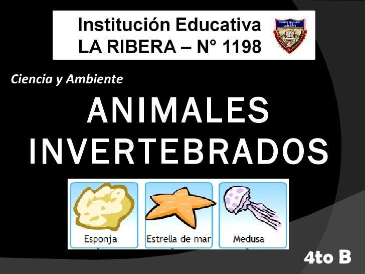ANIMALES INVERTEBRADOS Ciencia y Ambiente 4to B