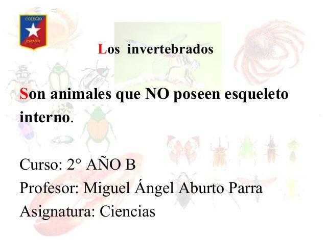 Los invertebradosSon animales que NO poseen esqueletointerno.Curso: 2° AÑO BProfesor: Miguel Ángel Aburto ParraAsignatura:...