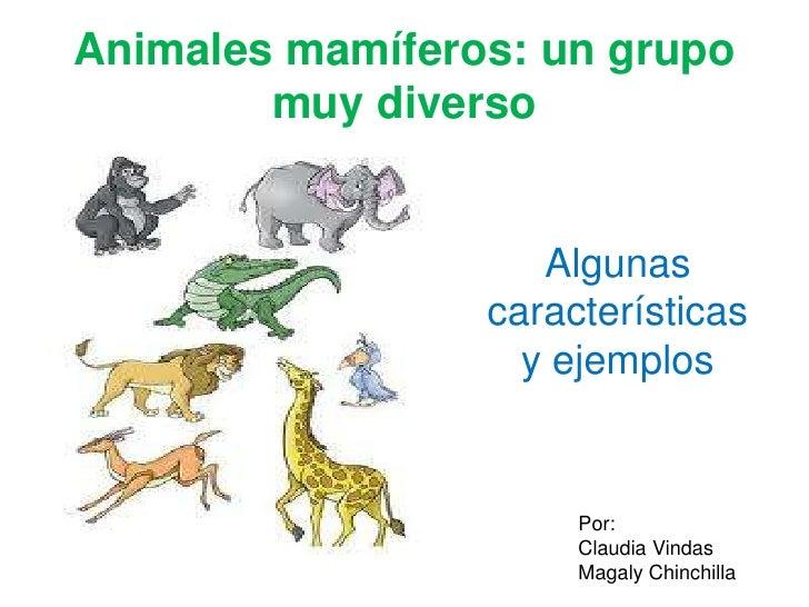 Animales mamíferos: un grupo muy diverso<br />Algunas características y ejemplos<br />Por:<br />Claudia Vindas<br />Magaly...