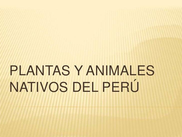 PLANTAS Y ANIMALESNATIVOS DEL PERÚ