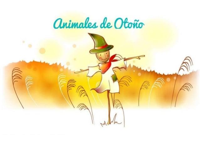 Animales otoño