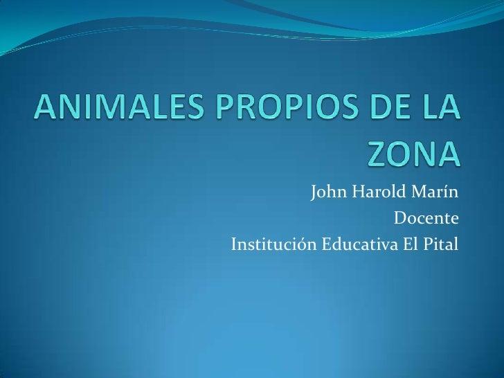 ANIMALES PROPIOS DE LA ZONA<br />John Harold Marín<br />Docente <br />Institución Educativa El Pital<br />