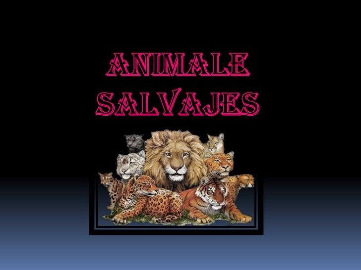 ANIMALESALVAJES<br />