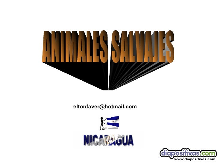 Animales Salvajes Diapositivas