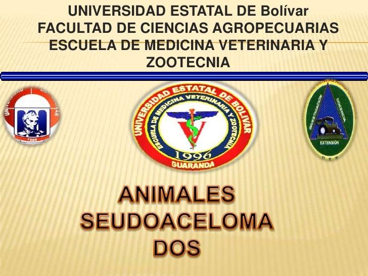 UNIVERSIDAD ESTATAL DE BolívarFACULTAD DE CIENCIAS AGROPECUARIASESCUELA DE MEDICINA VETERINARIA Y ZOOTECNIA<br />ANIMALES ...