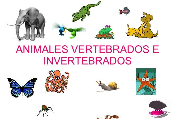 http://image.slidesharecdn.com/animalesvertebradoseinvertebrados-090528125904-phpapp02/95/animales-vertebrados-e-invertebrados-1-728.jpg?cb=1243515670
