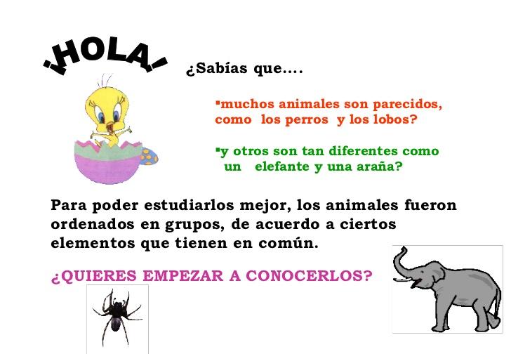 Animales Vertebrados E Invertebrados - Taringa!