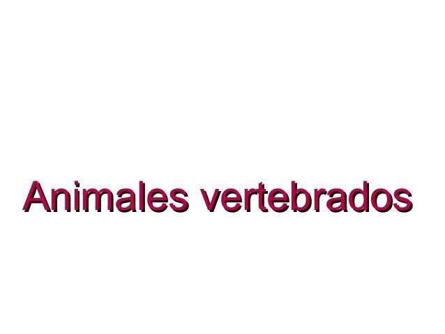 Animales vertebradosAnimales vertebrados