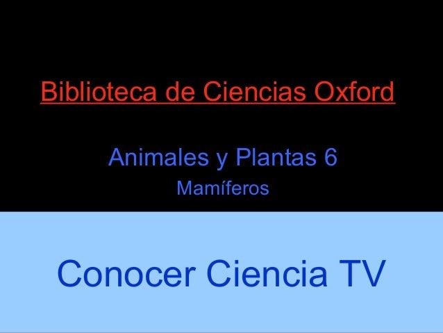 Conocer Ciencia: Mamíferos - Biología 6