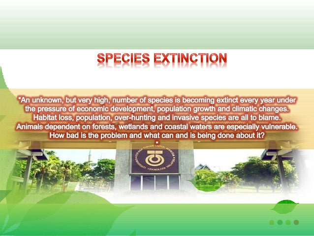 • Definition of Species Extinction• Type of Extinction• Factor of Extinction• List of Extinct Animal• Solution• Conclusion22