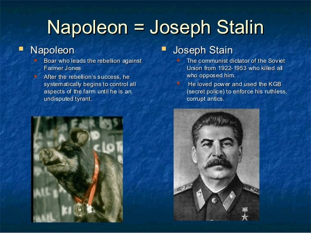 joseph stalin essay Joseph stalin was the leader of the soviet union from the 1920 until his death in 1953 he has done a lot of good things for his country but during his reign, he also has a lot of mistakes and these mistakes we also can see in the story called 1984 1984 tells the story.