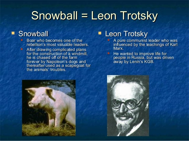 the relationship between snowball and napoleon An essay or paper on napoleon and snowball the relationship surrounding snowball and napoleon in george orwells animal farm tends to be on rocky grounds snowball, a clever pig, tends to be loyal, brave, and outgoing these are just a few excellent qualities of a leader napoleon, a boar, on the other hand, is quite frankly rude, wretched.