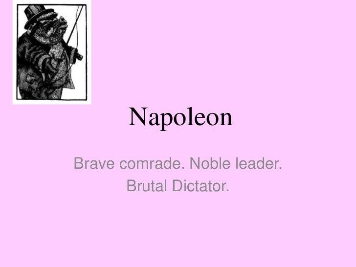 napaleon essay paper