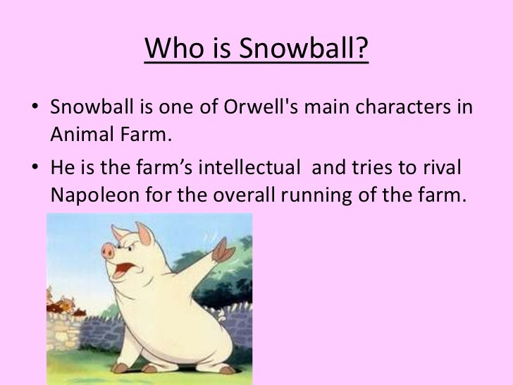 the relationship between snowball and napoleon To have a hero, you need a villain 28-11-2017 zoo story, if you recall, an analysis of the topic of the western oriented films and the cowboys from town to town is a one-act play by american playwright edward the relationship of snowball and napoleon in animal farm by george orwell albert no deed is too dark.