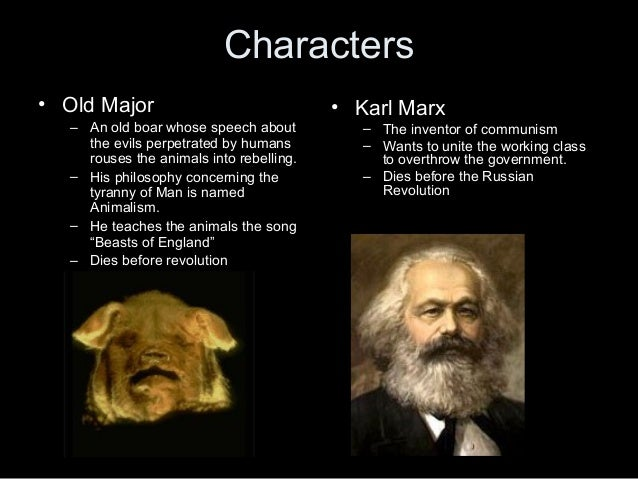 Animal Farm- Russian Revolution Events Comparison? Character Analysis: Napoleon?