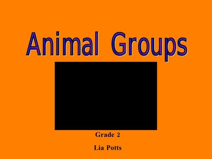 Grade 2 Lia Potts Animal Groups