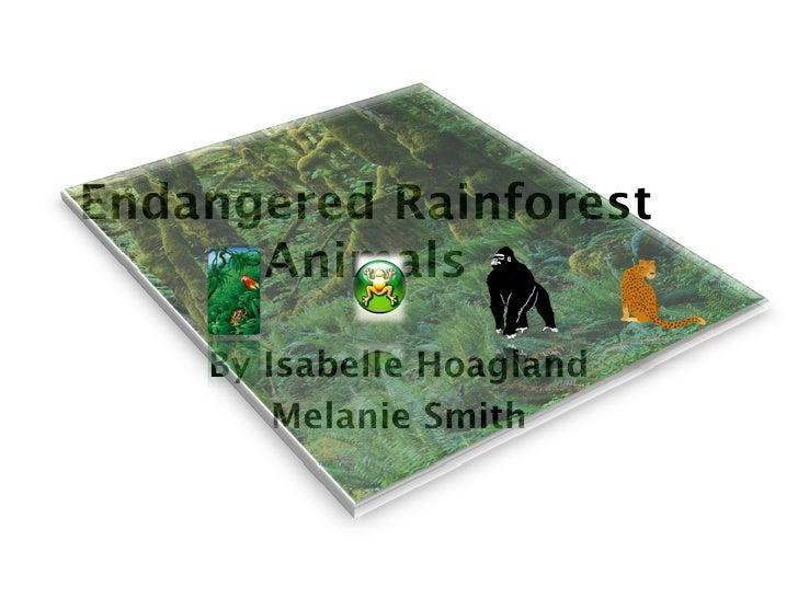 Endangered Rainforest       Animals      By Isabelle Hoagland         Melanie Smith