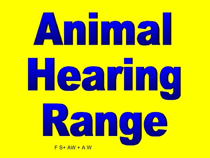 Animal Hearing Range F S+ AW + A W