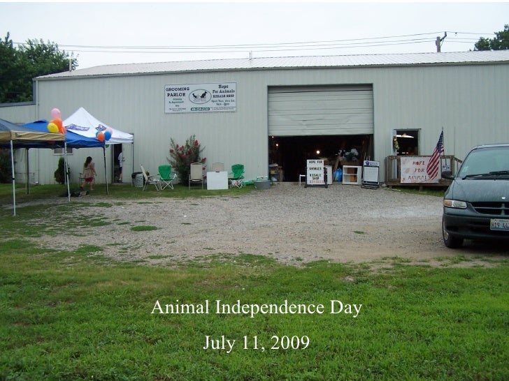 Animal Independence Day      July 11, 2009