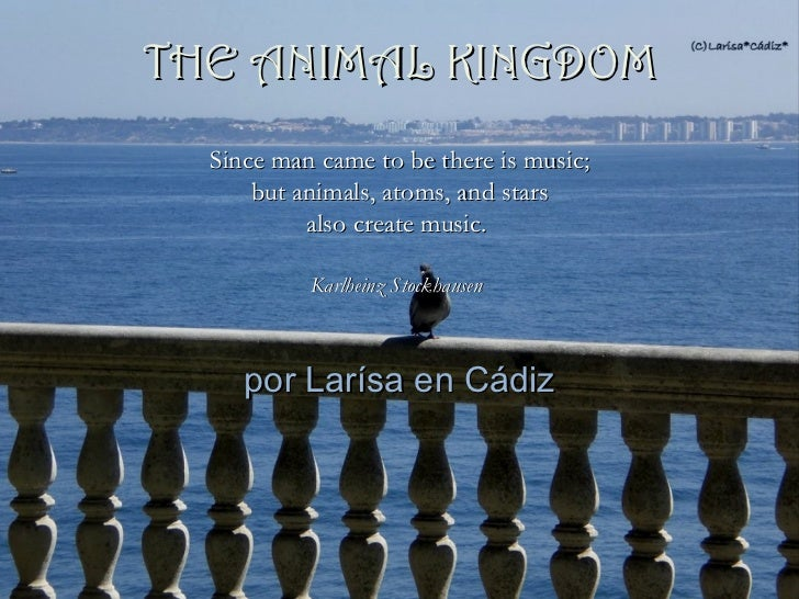 THE ANIMAL KINGDOM  Since man came to be there is music;      but animals, atoms, and stars           also create music.  ...