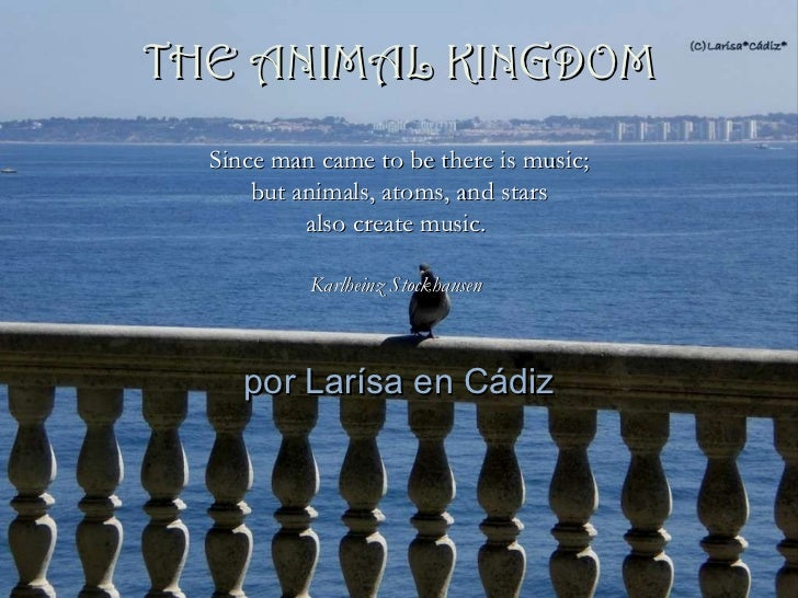 por Larísa en Cádiz Since man came to be there is music; but animals, atoms, and stars  also create music.   Karlheinz Sto...