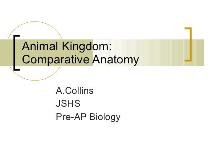 Animal Kingdom: Comparative Anatomy A.Collins JSHS Pre-AP Biology