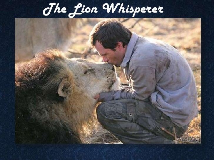 Animal Love ~ Wild Thing