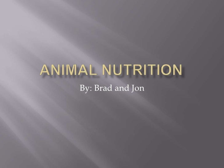 Animal Nutrition<br />By: Brad and Jon<br />