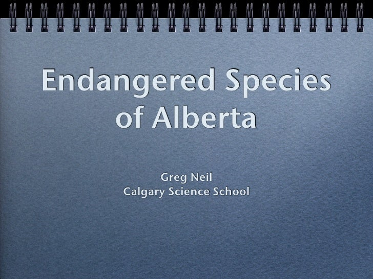 Endangered Species Presentation GEOEC