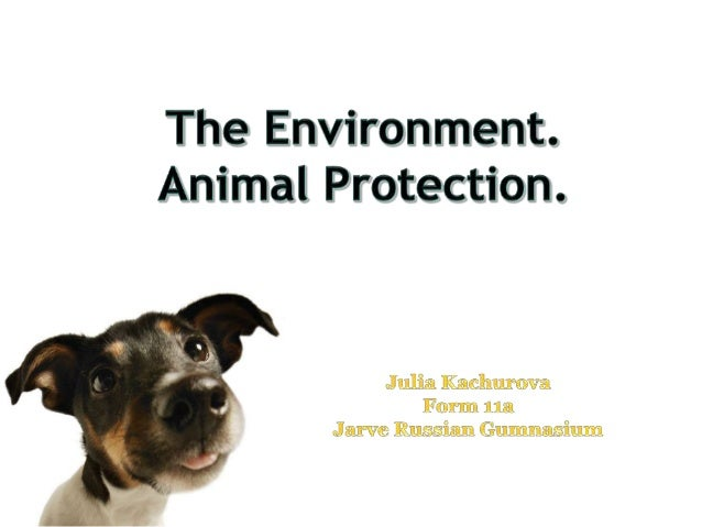 The environment. Animal protection.