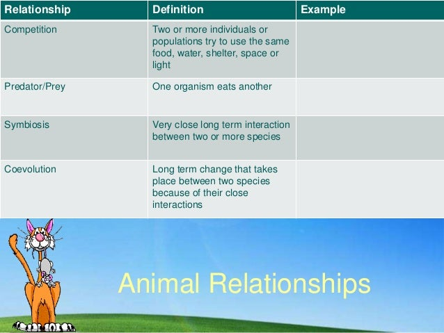 Animal Relationships Relationship Definition Example Competition Two or more individuals or populations try to use the sam...
