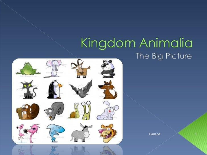 Earland's Animal Review - Bio 11