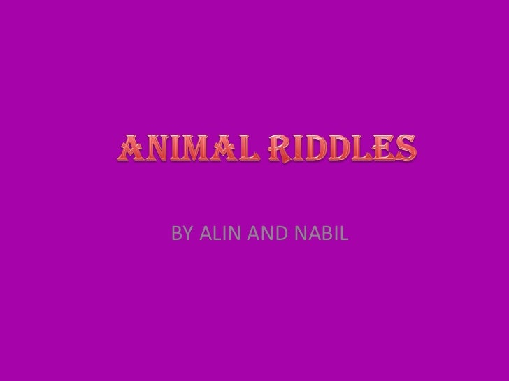 Animal riddles by alin and nabil