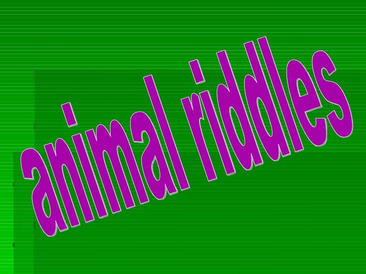 Animal riddles by paula and sonia