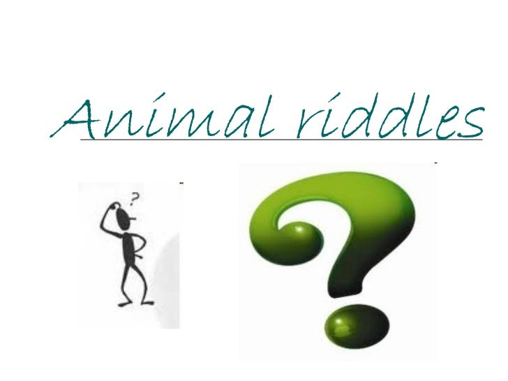 Animal riddles by w.a.