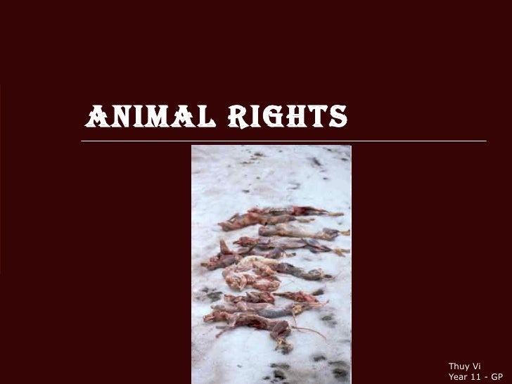Animal Rights Thuy Vi Year 11 - GP