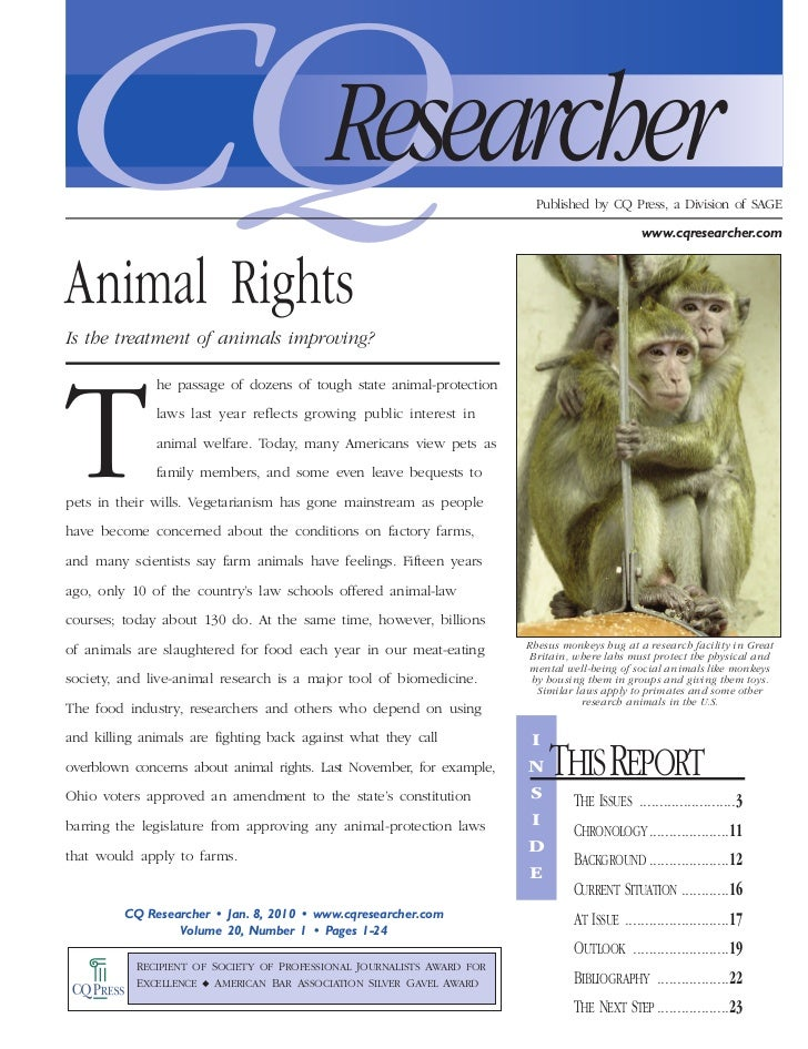 Animal Rights - Is the Treatment of Animals Improving?