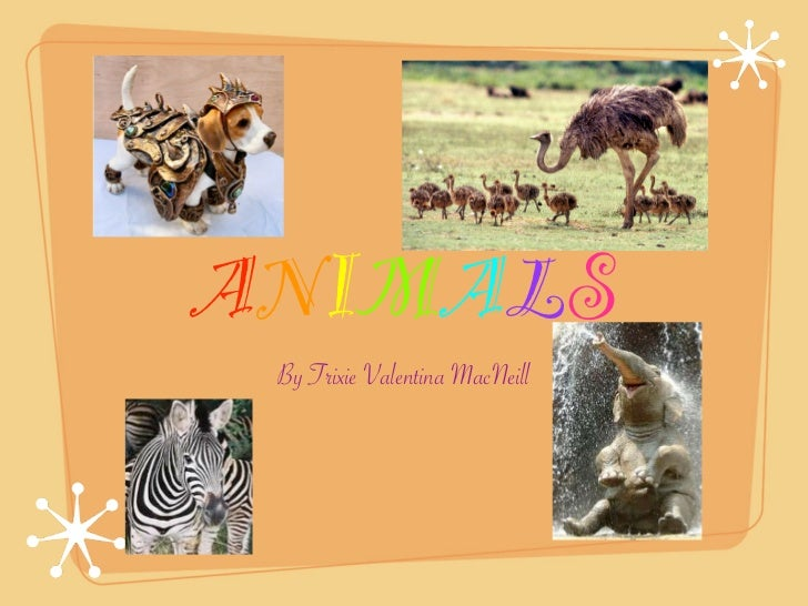 ANIMALS By Trixie Valentina MacNeill