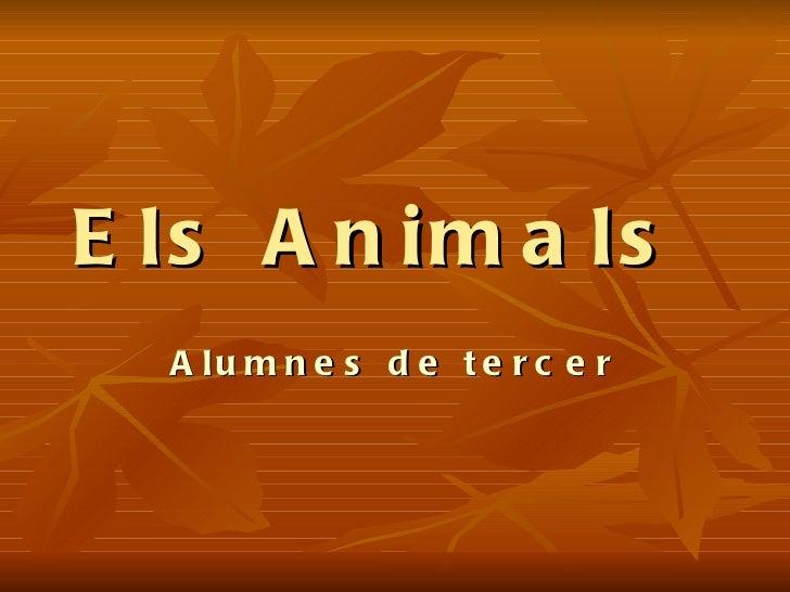 Els Animals  Alumnes de tercer