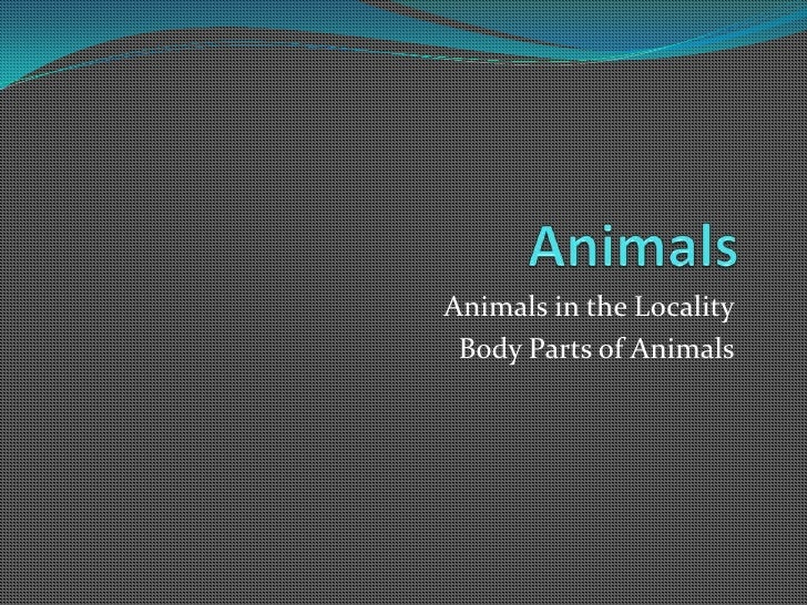 Animals in the locality, body parts of animals, Special body parts of animals