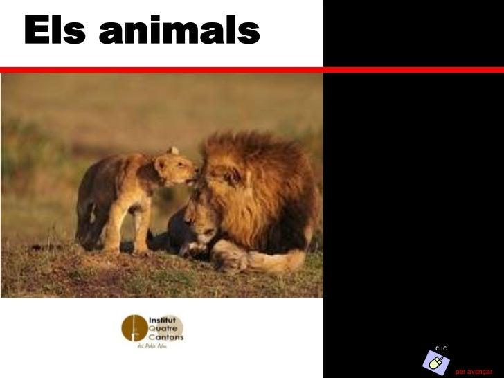 Els animals              clic                     per avançar