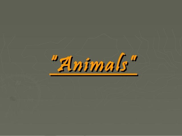 Animals(gj.angleze)