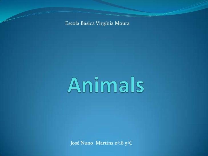 Escola Básica Virgínia Moura<br />Animals<br />José Nuno  Martins nº18 5ºC<br />