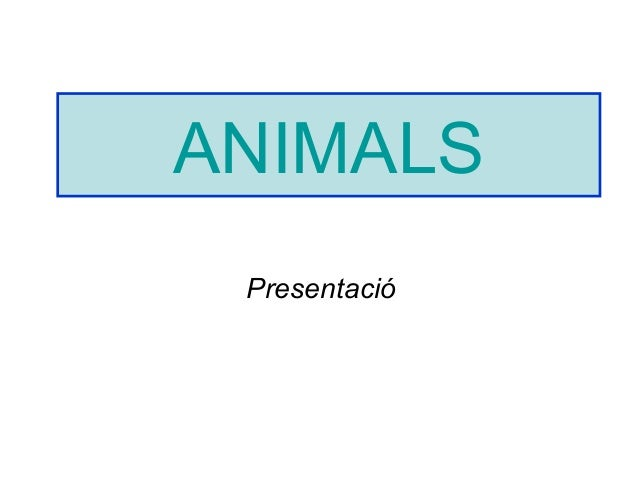 Animals power point